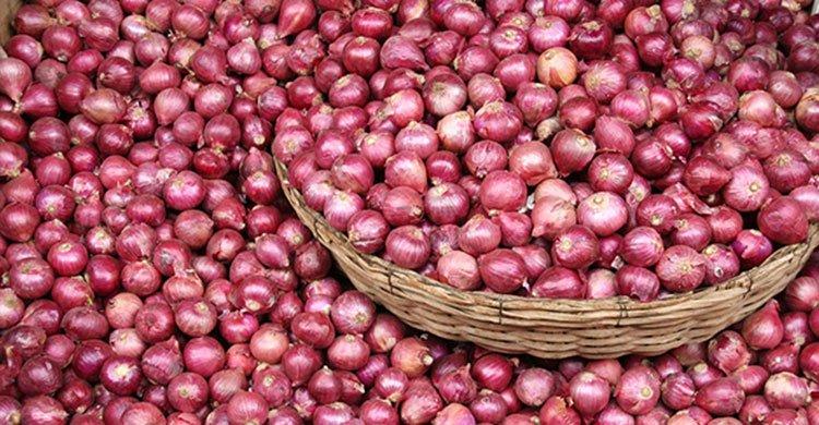 onion-20171116104525